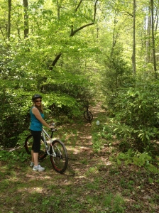 North Mills River mountain biking trails.